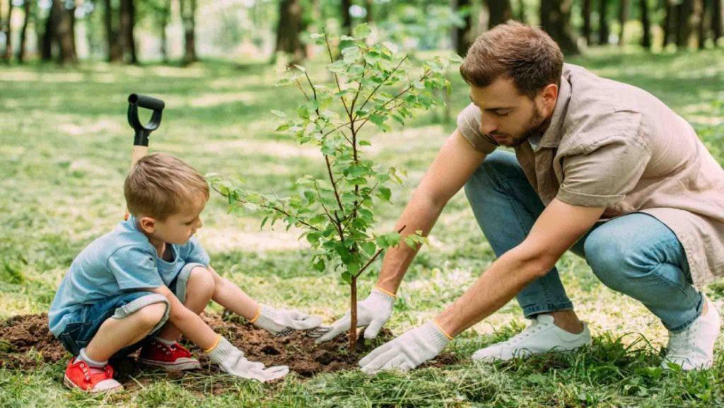 درختان و گیاهان چگونه اکسیژن تولید می کنند؟ | کلاس اینترنتی ما | مومکا | MOMEKA.IR