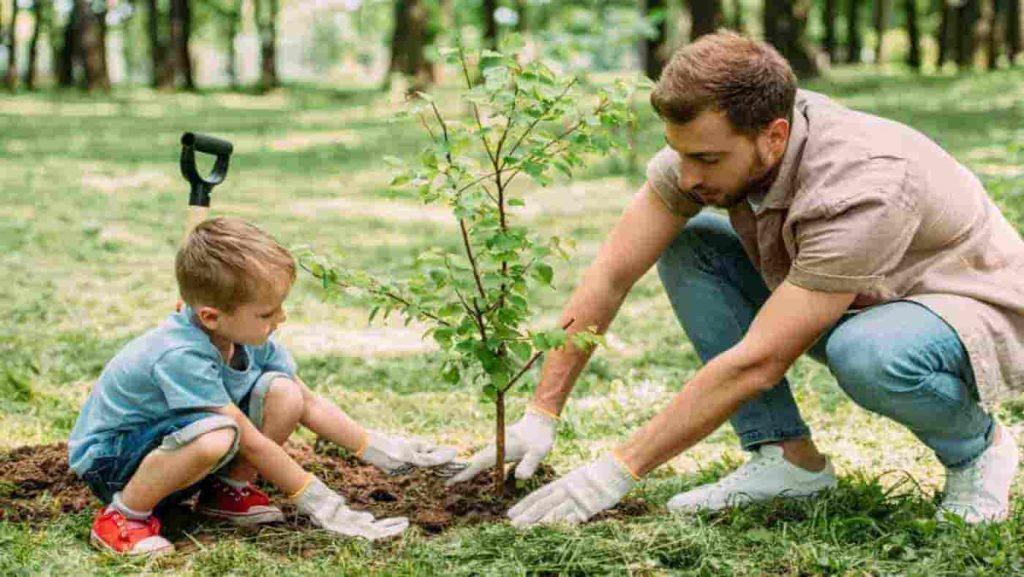 درختان و گیاهان چگونه اکسیژن تولید می کنند؟ | کلاس اینترنتی ما درس و مدرسه | مومکا | darsomadrese.com